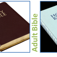The Bible is Really 2 Books (Child & Adult)